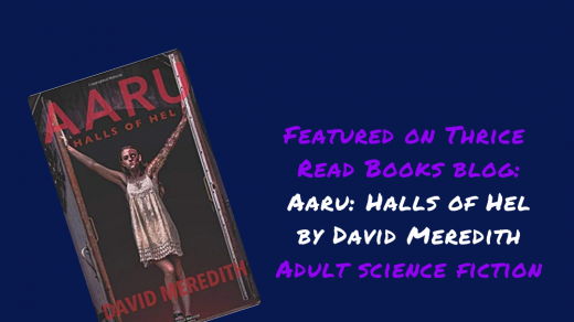 Jenn reviews book 2 in David Meredith's Aaru Cycle - Aaru: Halls of Hel - YA Science Fiction, Virtual Reality, Life After Death